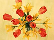 室内花朵唯美桌面壁纸