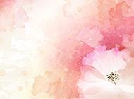 浅粉色水彩花蕊ppt背景图片