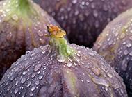 營養水果無花果高清精美特寫壁紙