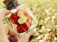 玻璃瓶里的春天梦幻唯美背景精选