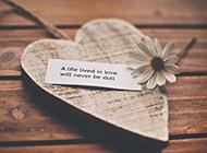 高清愛情浪漫唯美情人節桌面壁紙