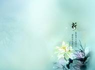 中國風淡雅荷花背景圖片