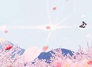 小清新蝴蝶课件粉色背景图片