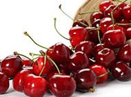 紅潤剔透的櫻桃高清水果壁紙