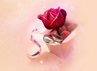 玫瑰与钻戒唯美爱情背景图片