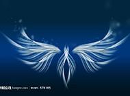 翅膀熒光藍色背景圖賞析