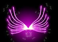 翅膀紫色熒光背景圖片賞析
