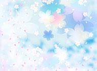 简历背景图片 淡雅唯美的花朵