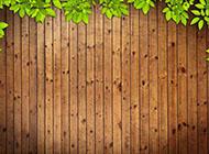复古木纹与树叶相册背景图片