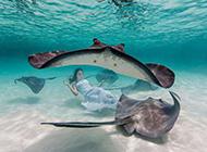 深海夢幻唯美意境圖片——海的女兒