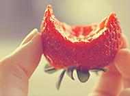 超有创意的欧美唯美意境水果图片