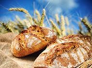 现烤面包超清摄影图片