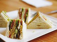 蔬菜沙拉搭三明治美味可口