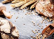 自制小麦粗粮面包高清图片