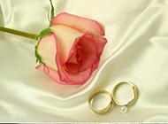 情侶對戒甜蜜粉玫瑰圖片