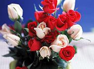 精致素雅玫瑰插花盆艺精美选图