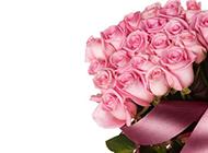 香气四溢的粉玫瑰花束图片