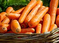 一堆胡萝卜图片高清精选