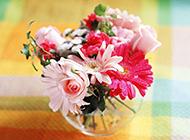 玻璃瓶中的粉嫩插花花束图片
