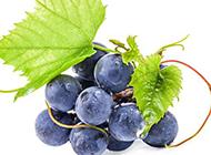 好吃的水果葡萄图片素材
