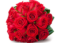 恋人节唯美红玫瑰浪漫图片素材