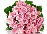 唯美的粉红玫瑰花束图片赏析