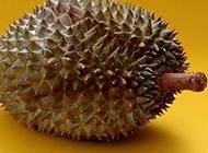 水果之王榴莲高清大图