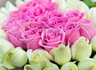 浪漫花束精致唯美情人节素材
