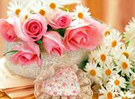 桌子上最美的花朵图片