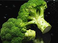 绿色新鲜的西兰花蔬菜图片