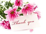 粉色鲜花背景图片素材欣赏