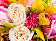 鲜花图片大全彩色花束浪漫素材分享