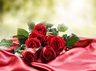 热情红玫瑰婚礼浪漫高清壁纸