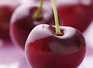红色樱桃超清特写图片