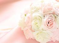 鲜花图片大全粉色布艺花束素材