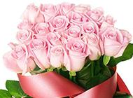 浪漫的20朵粉玫瑰高清大图