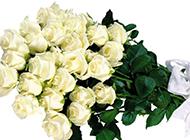 一束白玫瑰鲜花高清图片