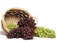 一篮子的葡萄图片素材