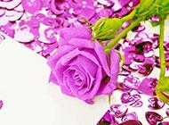 情人节玫瑰花图片浪漫唯美