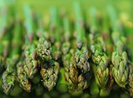 抗癌之王野生蘆筍圖片