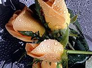 带露珠的淡黄香槟玫瑰图片