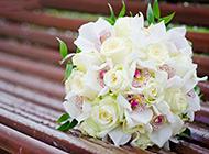 长椅上素雅的白色花束图片