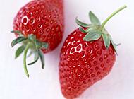 红彤彤的新鲜草莓图片素材