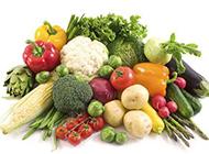 绿色植物图片大全 健康的有机蔬菜