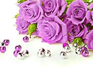 憂郁高貴的紫玫瑰圖片