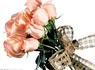 一束香檳玫瑰高清圖片素材