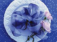 高清粉玫瑰鲜花壁纸清新浪漫
