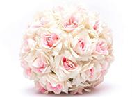 粉玫瑰花束图片浪漫唯美