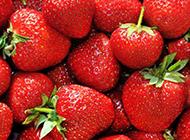 一堆红色的草莓图片
