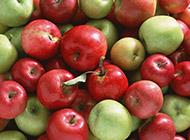 果香诱人的苹果图片